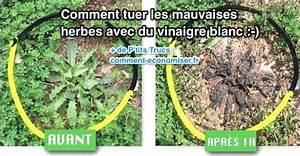 Comment Enlever Les Mauvaises Herbes : l 39 astuce rapide pour tuer les mauvaises herbes avec du ~ Melissatoandfro.com Idées de Décoration