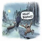 Bigfoot Evidence Humor Satirical