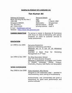Resume format 10 Best Resume Format Examples Full Hd