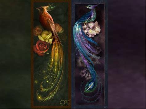 peacock fantasy backgrounds beautiful peacocks