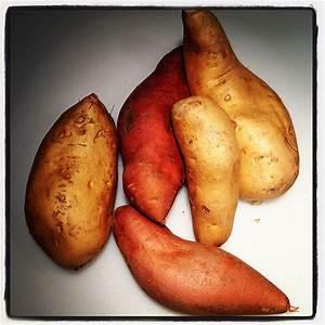 Sweet Potatoes   Sweet Potatoes. Orange coloured fleshed ...