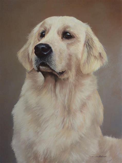 Golden Retriever Portrait Painting By Mark Whittaker