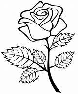Roses Coloring Printable sketch template