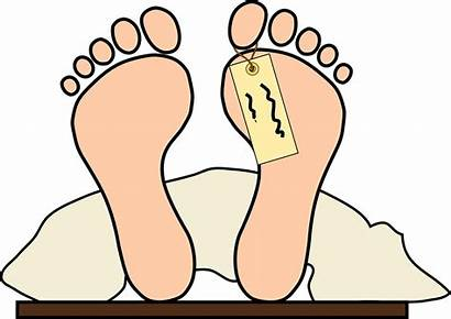 Toe Tag Feet Dead Morgue Foot Vector