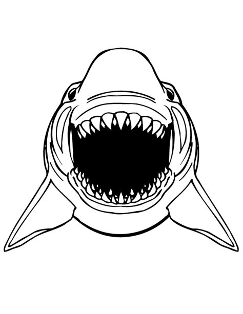 great white shark coloring pages    print