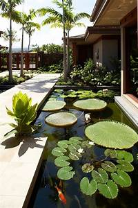 Design Japanese Koi 67 Cool Backyard Pond Design Ideas Digsdigs