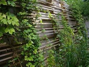 Support Pour Rosier Grimpant : un treillage en bois moderne et facile construire des ~ Premium-room.com Idées de Décoration