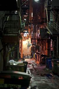 Back, Alley, In, 2020