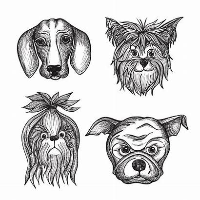 Drawn Dog Faces Hand Vector Clipart