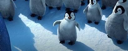 Penguin Happy Feet Gifs Adorable Penguins Mumble