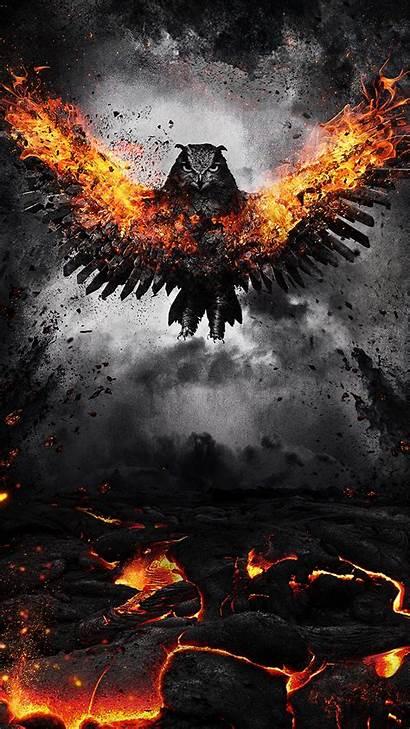 Fire Wings Owl Wallpapers Bird Background Flap
