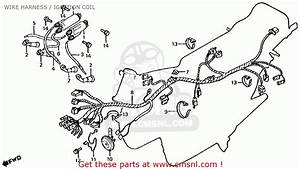 Honda Cb650 1981  B  Usa Wire Harness    Ignition Coil