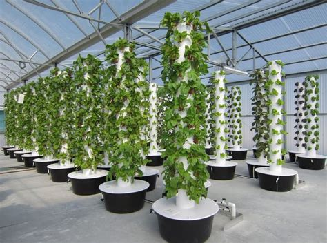 Best Images About Hydroponics On Pinterest