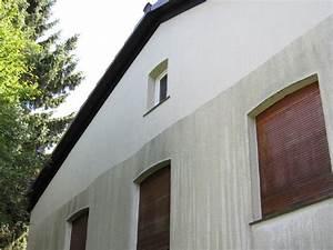 Moos Entfernen Dach : moos vom balkon entfernen ostseesuche com ~ Orissabook.com Haus und Dekorationen
