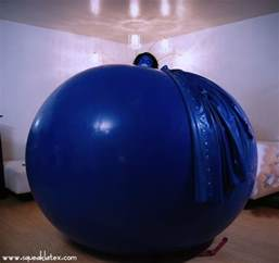 Blueberry Inflation Suit