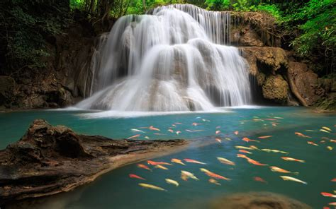 Waterfall Background by Waterfall Backgrounds Pictures Wallpaper Cave