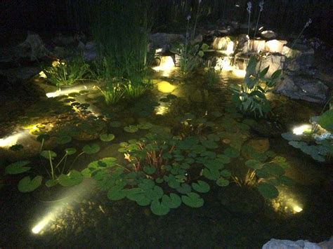 koi pond lighting ideas why adding led lighting to your pond is a must maryland