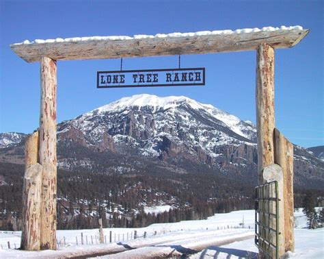 lone tree ranch gate ranch gates