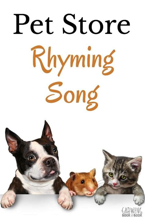 best 25 pet ideas on pet shop pet 184   68bae84a1ff5c83840052fd24ecadc57 pet shop theme preschool pet study preschool