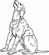 Coloring Pages Dog Coon Hound Basset Print Printable Plott Getcolorings Template Coloringhome sketch template