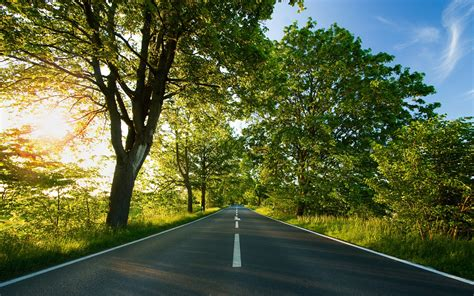 Car Wallpapers Desktops Nature Pictures by Photography Nature Plants Trees Landscape Road Sun