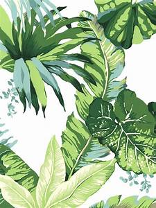 25+ best ideas about Palm leaf wallpaper on Pinterest ...