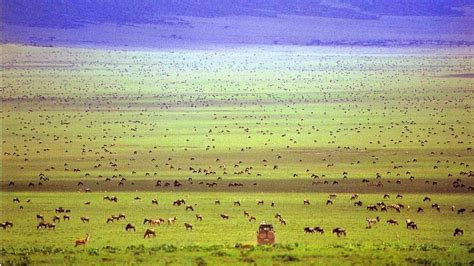 tempat wisata  afrika  wajib dikunjungi
