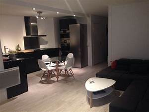 decoration salon 30m2 exemples d39amenagements With amenagement salon salle À manger 30m2 pour deco cuisine