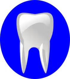 Tooth Outline Clip Art