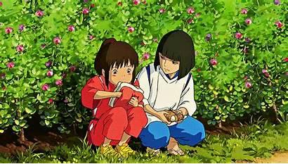 Spirited Haku Away Bean Stars Chihiro Guardado
