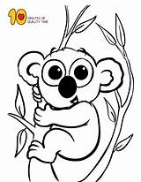 Koala Coloring Pages Animal Animals Number Letter Sheet Dolphin Pdf sketch template