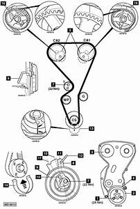 How To Replace Timing Belt On Peugeot 206 1 6 2003