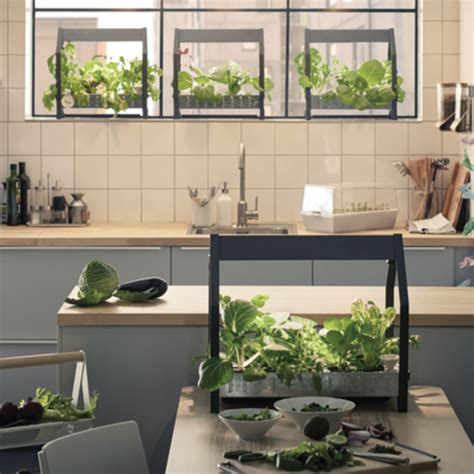 cuisine kit ikea ikea launches hydroponic indoor gardening kit ideal home