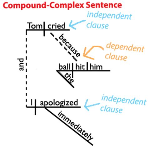 sentence structure learn    types  sentences