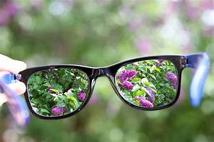 What's the Difference Between Farsighted & Nearsighted ...