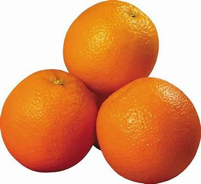 Orange Transparent Oranges Naranjas Clipart Clip Fruits