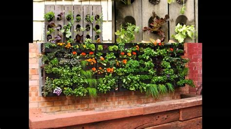 Vertical Gardening Vegetables by Home Vertical Gardening Vegetables