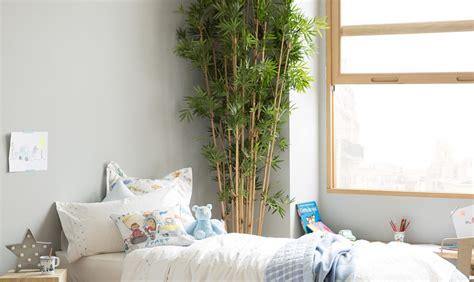 Stunning Piante In Camera Da Letto Ideas  Home Interior
