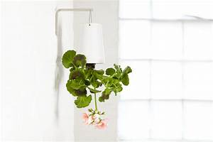 Boskke Sky Planter : upside down planten ondersteboven ~ Orissabook.com Haus und Dekorationen