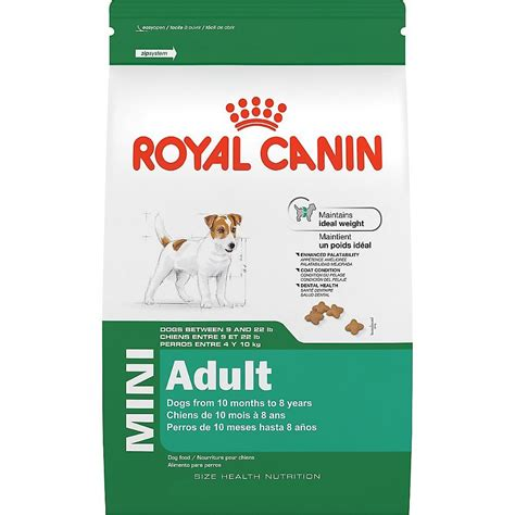 royal camini the best food for boston terriers