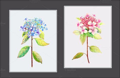 gartenhaus 2 50x3 00 blush and blue watercolor clipart illustrations creative