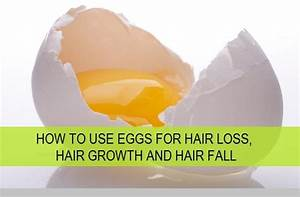 How To Use Eggs For Hair Growth Hair Loss And Hair Fall