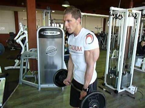 la chaise exercice musculation exercice de musculation des biceps le curl à la barre