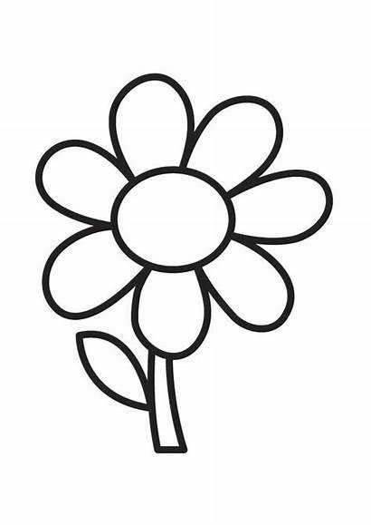 Flores Criativos Desenhos