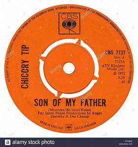 "45 RPM 7"" UK record label of Son Of My Father by Chicory ..."