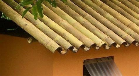 bamboo   building material    advantages