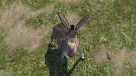 donkey  parody wiki fandom powered  wikia