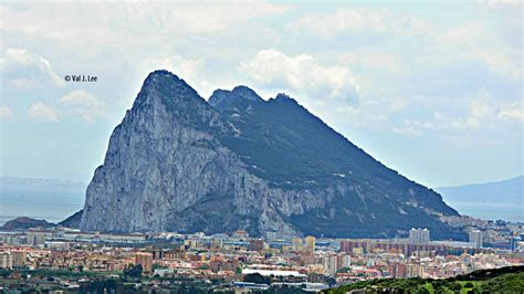 rock of gibraltar l yellow legged seagull birds through val lee 39 s looking glass
