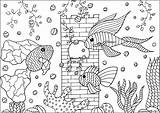 Aquarium Colorear Poissons Peces Pesci Fishes Colorare Coloring Dans Trois Disegni Fische Colouring Malbuch Erwachsene Adultos Fur Adulti Adult Ryby sketch template
