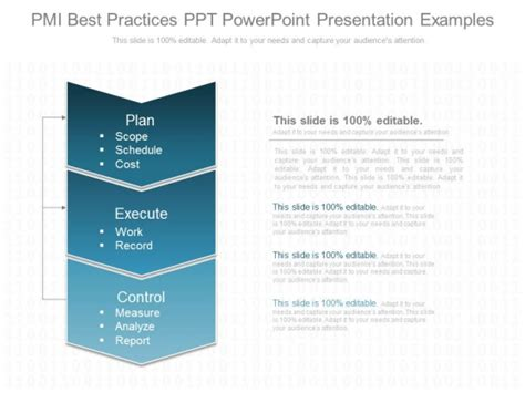 Pmi Business Template by Pmi Best Practices Ppt Powerpoint Presentation Exles